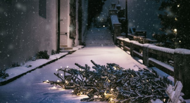 8 Tips to Beat Holiday Stress.