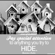 Secret of Adulthood: Pay Special Attention to Anything You Try To Hide.