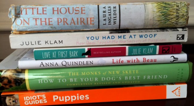 7 Terrific Books If You're Getting a Dog—What Books Have I Overlooked?