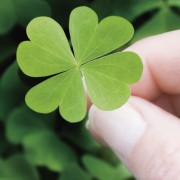 A Lucky Charm That Works Even If You Don't Believe In It.