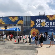"""To Research the Five Senses, I Visited the """"Immersive Van Gogh Exhibit."""""""